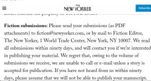 New Yorker Magazine Writing | Profitable Copywriting niche examples